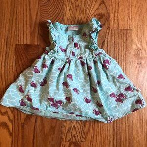 Rosie Pope Flamingo Dress 12 months